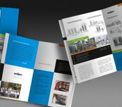 Catalogue 11